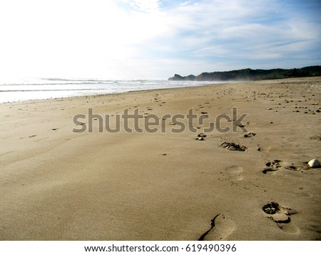 photo of footprints on sand