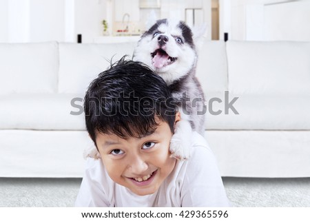 Photo of happy little boy playing with siberian husky puppy in the living room at home - stock photo