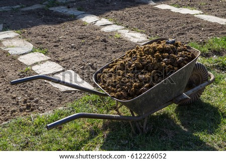 photo of horse manure on garden gardening