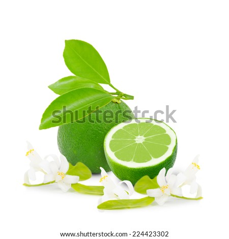 Photo of lime with slice, leaves and blooms isolated on white - stock photo