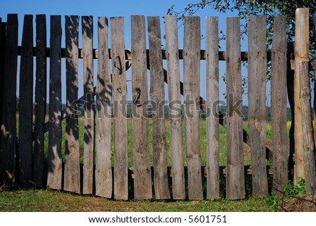 Photo of meadow with fence in sunny day. - stock photo