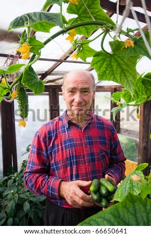Photo of men with cucumbers