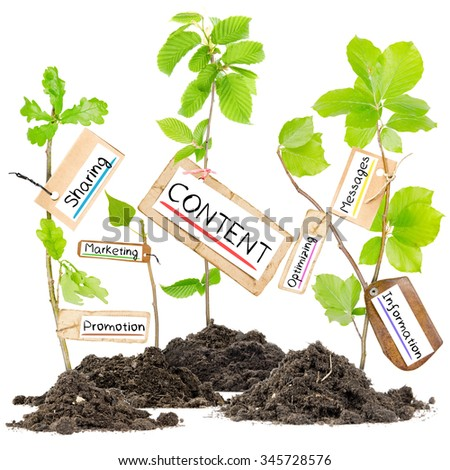 Photo of plants growing from soil heaps holding paper tags with conceptual words - stock photo
