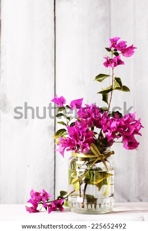 Photo of purple flower Bougainvillea bouquet in vase - stock photo