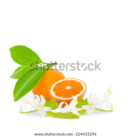 Photo of tangerine with slice, leaves and blooms isolated on white - stock photo