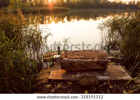 Photo of the Dais, log and water reed - stock photo