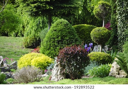 Photo of the Gardening and Landscaping With Decorative  Trees and Plants - stock photo