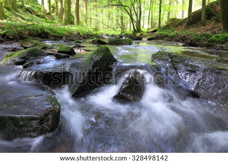 Photo of the nature in spring with a source(spring) of water in full of life forest / Source(Spring) of water in spring - stock photo