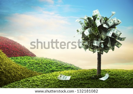 photo of tree made of dollars - stock photo