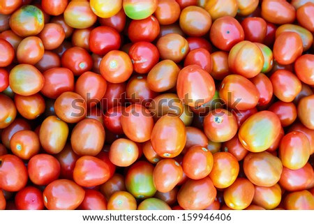 photo of very fresh tomatoes. - stock photo