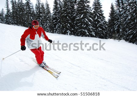 photo shoving a experienced skier making a turn