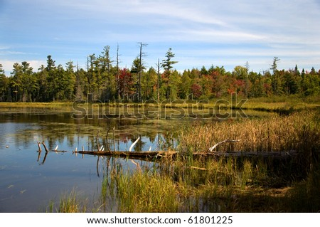 Photograph of a small lake in the northwoods of Wisconsin, taken in the beauty of the Autumn colors, surrounded by bogs, pines and spruces showing the wildness and remoteness of this wilderness area. - stock photo
