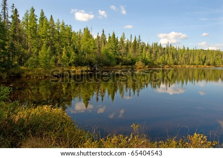 Photograph of an early fall northwoods lake, surrounded by bog, in northern Wisconsin. - stock photo