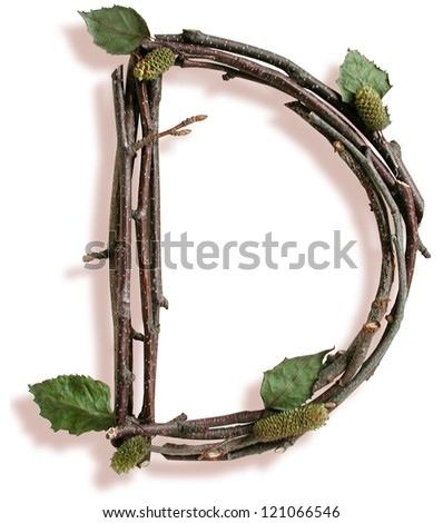 Photograph of Natural Twig and Stick Letter D - stock photo