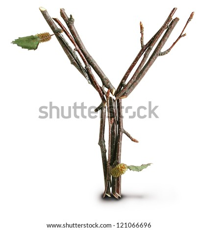 Photograph of Natural Twig and Stick Letter Y - stock photo
