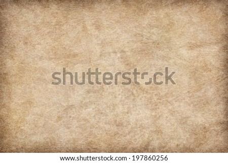 Photograph of old, animal skin parchment, coarse grained, vignette, grunge texture sample
