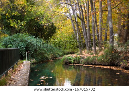 Photography at a park in autumn with a river