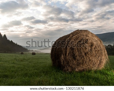 Photography hay bale in the morning in the meadow - stock photo