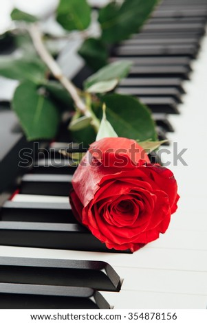 piano keys and red rose - stock photo