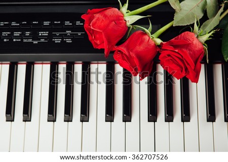 piano keys and red roses - stock photo