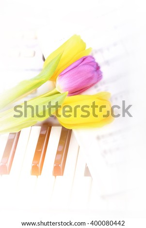 piano keys Tulip flowers gentle spring retro vintage style music background - stock photo