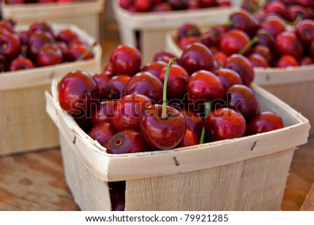 picked Michigan cherries in produce boxes - stock photo
