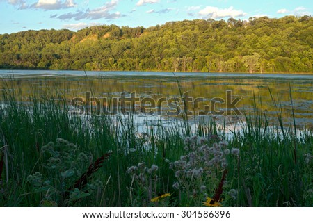 pickerel lake and forest in lilydale regional park along mississippi river and bluffs of saint paul minnesota - stock photo
