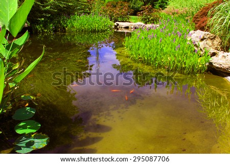 Pickerelweed and other water plants surround a small pond - stock photo