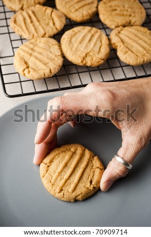 picking up a peanut butter cookie - stock photo