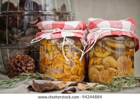 Pickled mushrooms - stock photo