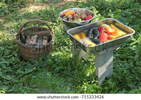 Pickled vegetables, zucchini and champignons for barbecue