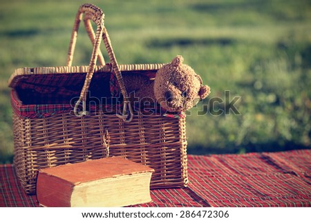Picnic basket and book on the grass - stock photo