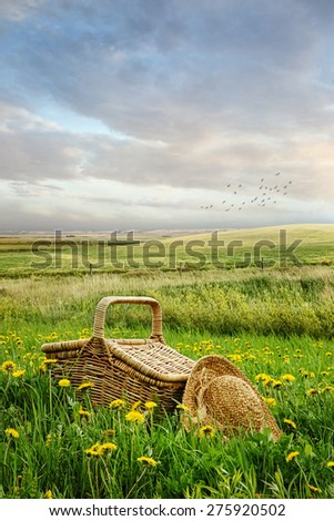 Picnic basket and hat in the tall grass