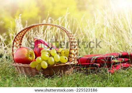 Picnic basket with fruits. Holiday vacation concept - stock photo