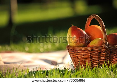 Picnic basket with fruits on grass in summer park - stock photo