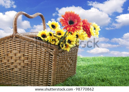 Picnic basket with Gerbera and sunflowersr, shot outdoor on the green grass in spring or summer - stock photo