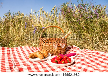picnic blanket with champagne, strawberries and croissant