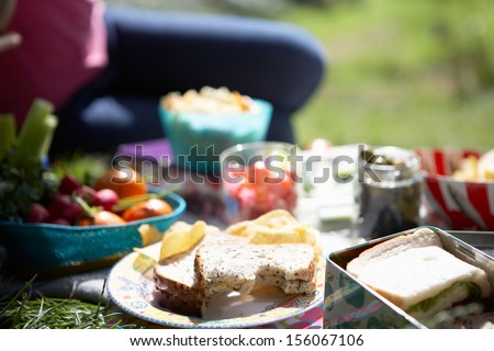 Picnic Food Laid Out On Blanket - stock photo