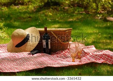 picnic fun - stock photo