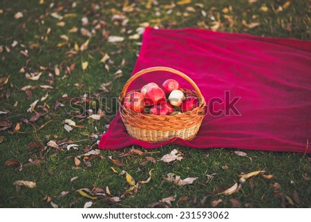 Picnic in the nature - stock photo