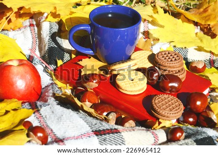 picnic in the park, autumn concept, hot tea, cookies, red apple, notebook - stock photo