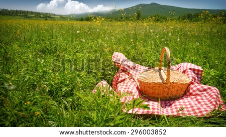 Picnic on Meadow at Sunny Day.