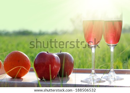 picnic - tabe with wine, wineglasses and fruits against sun  - stock photo