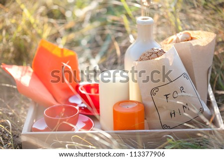Picnic - tea and cookies - stock photo