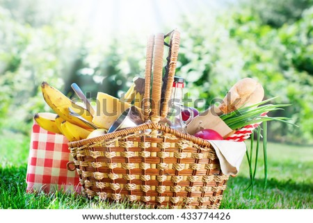 Picnic Wattled Basket Setting Food Bread Drink Juice Cheese Pears Banana Green Grass Summer Time - stock photo