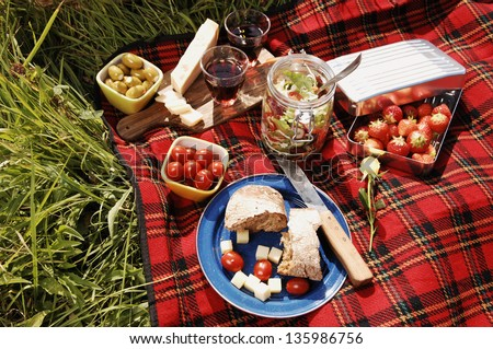 picnic with different sorts of snacks on a blanket - stock photo