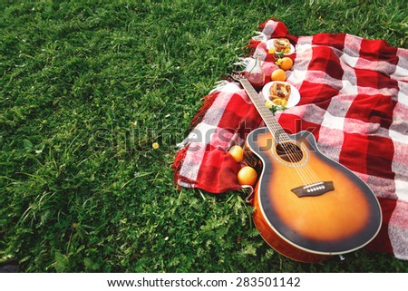 Picnic with Guitar Music on Grass. Summer Vacations. Selective Focus. Space for Your Text. - stock photo