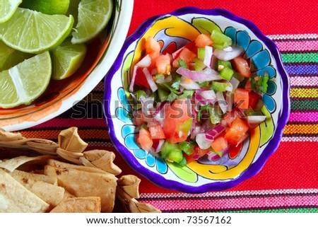 Pico de gallo tomato and chili Mexican sauce serape tablecloth - stock photo