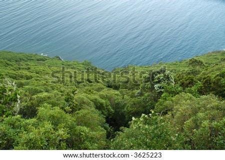 Pico island - stock photo