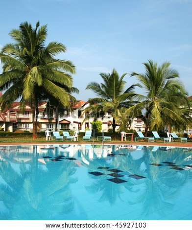 pictire of swimming pool with blue water and coconut trees